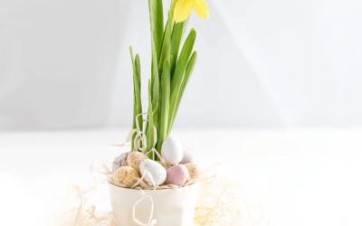 5 Tipps für ein Zero Waste Ostern! Einfach umzusetzen!