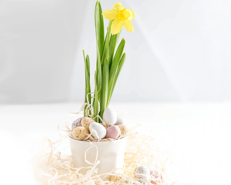 Zero Waste Ostern