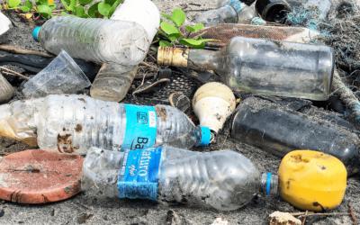 EU verbietet Einweg-Plastik – Was bedeutet das?