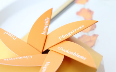 Tolle DIY Frühlingsidee: Getrocknete Blumen im Rahmen!