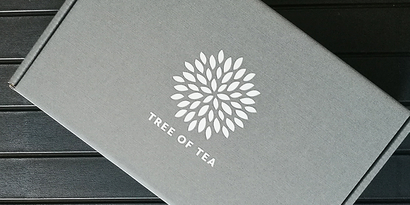 2Go Bottle von Tree of Tea