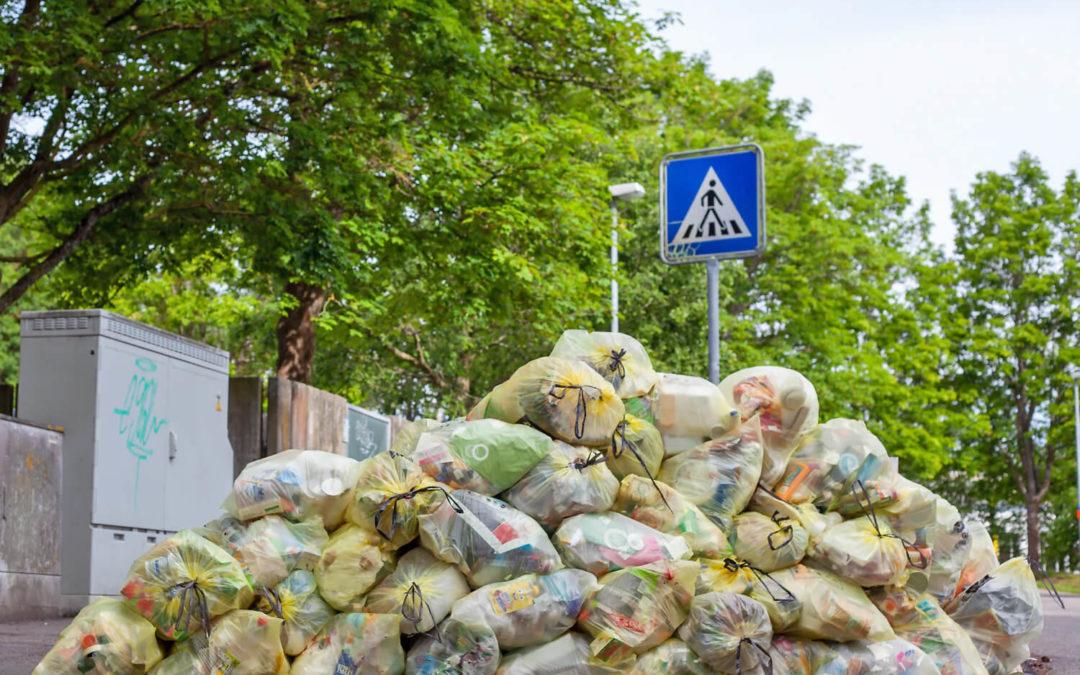 Zero Waste Food: 5 Tipps gegen Lebensmittelverschwendung!
